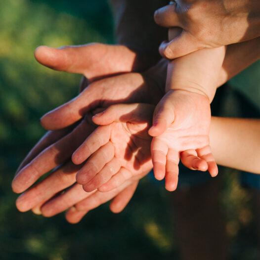 Curso E-learning | Derecho de familia