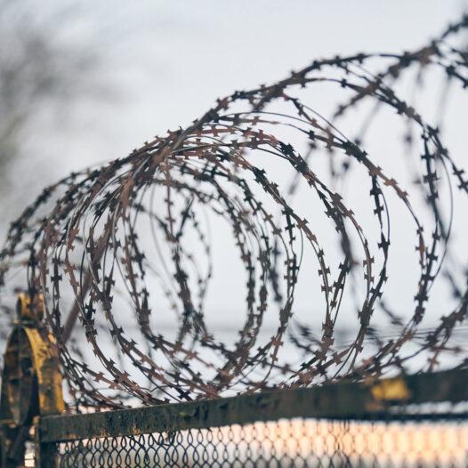 Máster Online | Derecho Penitenciario y Cuestión Carcelaria